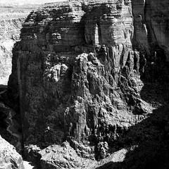 Trickle (Scott Holcomb) Tags: littlecoloradorivernavajotribalpark arizona hasselblad500c carlzeisssonnar14f150mmlens zenzabronica67mmso56•2cya3filter ilforddelta400profilm 120film 6x6 squareformat epsonperfectionv600 photoshopdigitalization