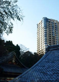 Tokyo rooftop view