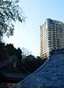 Tokyo rooftop view (DameBoudicca) Tags: tokyo tokio 東京 japan nippon nihon 日本 japón japon giappone atago 愛宕 roof tak dach toit techo tejado tetto 屋根 やね rooftiles dachziegel taktegel teja tuile tegola 瓦 わら