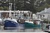 Squid Boats (blachswan) Tags: portfairy victoria australia southernocean squid boats rachelmaree northernstar moyneriver