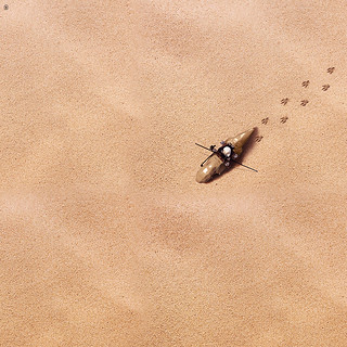 Lonely Dewback Rider from Above