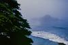20180724-00072.jpg (tristanloper) Tags: tristanloper creativecommons film nikonf6 california bigsur pacificcoast highway1 pacificocean pfeifferbeach cypress