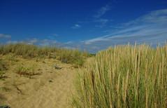 la Faute sur Mer - FRANCE (manguybruno) Tags: plage sable dune sky clouds landscape mer sea océan