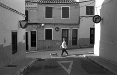 The dog walker (Gabo Barreto) Tags: mahon menorca balearicislands baleares street windows woman walking dog signs roadsigns blackandwhite monochrome selfdeveloped scannedfromfilm epsonv500 hp5 xtol vivitar35es rangefindercamera 35mm 135 ishootfilm filmisnotdead analoguephotography