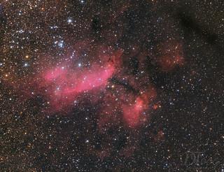 IC4628 - Prawn Nebula