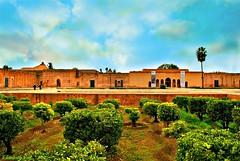 MAROCCO 01-2015 -099 (Elisabeth Gaj) Tags: elisabethgaj marocco afryka travel marrakech architecture building old history