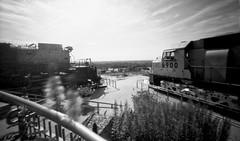 UP Big Boy & Centennial Locomotives, Kenefick Park, Omaha, NE (Gallery90) Tags: zeroimage69d pinhole kodaktmax100 niksilverefexpro2 omaha nebraska kenefickpark unionpacific centenniallocomotive bigboy
