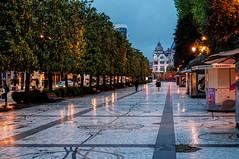 Paseo de los álamos. Oviedo (ccc.39) Tags: asturias oviedo paseo calle urbano ciudad árboles city urban noche nocturna night street