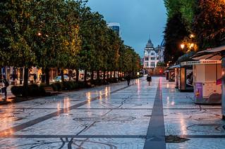 Paseo de los álamos. Oviedo