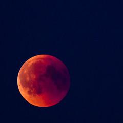 Blood Moon (diesmali) Tags: gothenburg västragötalandslän sweden se blood moon bloodmoon lunareclipse eclipse canoneos6d manualfocus canonef100400mmf4556lisiiusm canonef2xiii
