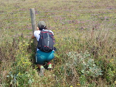 (senderismoenlondres) Tags: whitecliffsofdover deal saxon easy cliff england hiking walking coastal senderismo beach