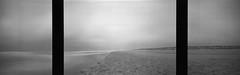 Genesis 3x3/1 (Rosenthal Photography) Tags: dänemark ff120 meer schwarzweiss realitysosubtle6x17 triptychon 6x18 asa50 20180705 mittelformat urlaub strand nordsee houvig ilfordlc2912920°c55min analog ilfordpanfplus sea genesis northsea beach denmark realitysosubtle rss ilford panf panfplus lc29 129 epson v800