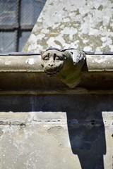 Dame Carcas (Eniram Cerf) Tags: nikond5300 lumière light occitanie aude carcassonne statue gargouille
