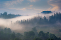 Tatra mountains in foggy morning (kamilgalanek) Tags: mountains fog trees morning poland
