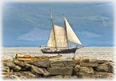 Sailing By, Lough Foyle. (willieguildea) Tags: boat yacht vessel water waterscape river lough loughfoyle landscape nikon coast coastal coastalireland shore rock