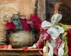 Ribbons (David DeCamp) Tags: stilllife flower display textured ribbon