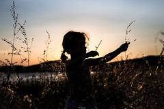 Like a bow (Tiomax80) Tags: bow silhouette sunset light backlight sky love tallgrass longgrass grass field evening lumière girl play playing bowshoot bowshooting pigtail gruissan aude occitanie roussillon nikon france nikonfrance nikonfr french photo outdoors nature out outside candid lake étangdegruissan lakeside bythelake piquenique