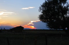 Tonight's Sunset (Patricia Henschen) Tags: sunset clouds trees ruin barn fence rural countryside ranch backroad backroads alamosa colorado southriverroad