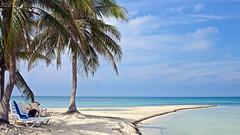 (#3.480) Karibikfeeling pur / Kuba (unicorn 81) Tags: kuba trinidad cuba caioiguanacuba smallisland excursion travel beach palm tree pier kleineinsel ausflug reise strand palme katamaran transport wasser caribbean karibikinsel karibikfeeling sand baum meer ozean himmel