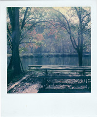 Patapsco Valley Pond (m.ashe7) Tags: polaroid maryland instantfilm color onestep2 polaroidoriginals patapscostatepark woods outside outdoors washedout
