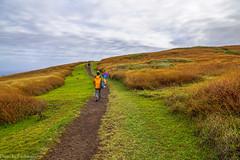 At the top of Rano Kau / На вершине Рано Кау (Vladimir Zhdanov) Tags: travel chile polynesia rapanui easterisland grass cloud sky landscape ranokau volcano field people road