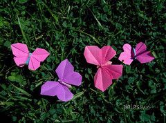 origami butterfly (polelena24) Tags: origami butterfly square onesheet grass