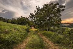 Persi in campagna - lost in the country (antoniopedroni photo) Tags: lost country path sentiero albero fienile tramonto sunset