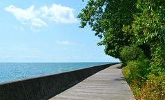 The Boardwalk .... Southside Ward's Island .... Toronto Islands, Toronto, Ontario, Canada (Greg's Southern Ontario (catching Up Slowly)) Tags: boardwalk wardsisland wardsislandboardwalk torontoislands greatlakes lakeontario torontoist lake water ontario canada southernontario torontoislandsboardwalk