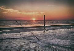 Sunset at Baltrum (jan.arnds) Tags: baltrum northsea water meer sunset poles birds openwater ferry outdoor nature horizon orange