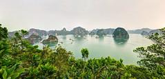 Ha Long (Mat Distef) Tags: vietnam bay baiedhalong halongbay waterscape landscape paysage panorama travel light