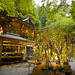 Tanabata in Kibune / 貴船神社の七夕