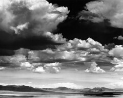 Mono Lake (Cimbaso) Tags: tmax100 analog outdoor blackandwhite bw film 4x5 large format sierra canham kodak