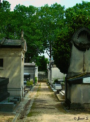 L'allée (Jean S..) Tags: cemetery graves stone alley trees montparnasse
