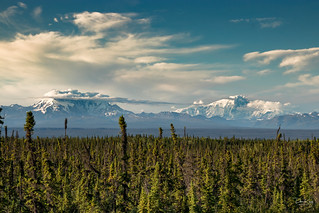 The Wrangell Mountains