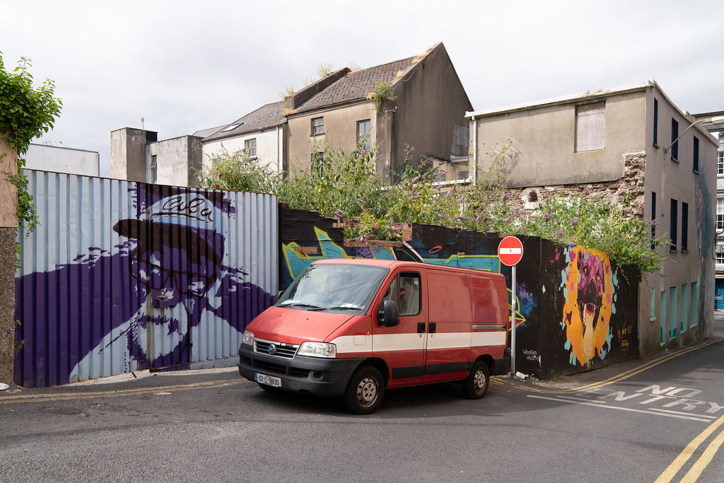 EXAMPLES OF STREET ART [URBAN CULTURE IN WATERFORD CITY]-142290
