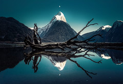A touch of Luminar (Trey Ratcliff) Tags: milfordsound newzealand ratcliff stuckincustomscom trey treyratcliff luminar tree mountain moon reflection post processing water lake sky