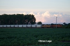 BNSF 8217 (eslade4) Tags: up unionpacific iowafalls bnsf8217 es44c4 up4753 sd70m coveredhoppers