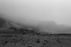 20180724-00037.jpg (tristanloper) Tags: tristanloper creativecommons film nikonf6 california bigsur pacificcoast highway1 pacificocean pfeiffer beach fog mist