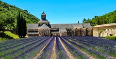Abbaye Notre-Dame de Senanque (werner boehm *) Tags: wernerboehm lavender provence notredamedesénanque
