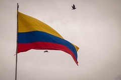 """Posesión Presidente de Colombia • <a style=""""font-size:0.8em;"""" href=""""http://www.flickr.com/photos/39526151@N07/30046990048/"""" target=""""_blank"""">View on Flickr</a>"""