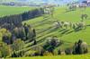 Moststrasse (Wolfgang Binder) Tags: landscape hills trees grass alps scenery moststrasse spring nature nikon d7000 zeiss planar planart2100