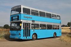 F292NHJ (Philip Hambling) Tags: mcwmetrobus