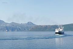 """""""Skutvik"""" (OlafHorsevik) Tags: skutvik jektvik kilboghamn sørfjorden torghattennord thn kystriksveien rv17 fv17 ferge ferga ferry ferja ferje"""