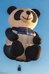 Unique camara Superstore. NJ ...Bear Balloon (Xacobeo4) Tags: ballonfestival2018 â©allrightsreserved bear balloon unique camara