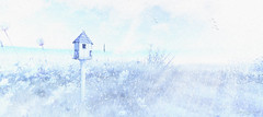 Frigid (LuShes Blessed) Tags: second life sl secondlife bird house winter snow snowy snowflake birds overcast cloudy flowers cold mystical fae photography blog blogger photo photoshop windlight lushes blessed