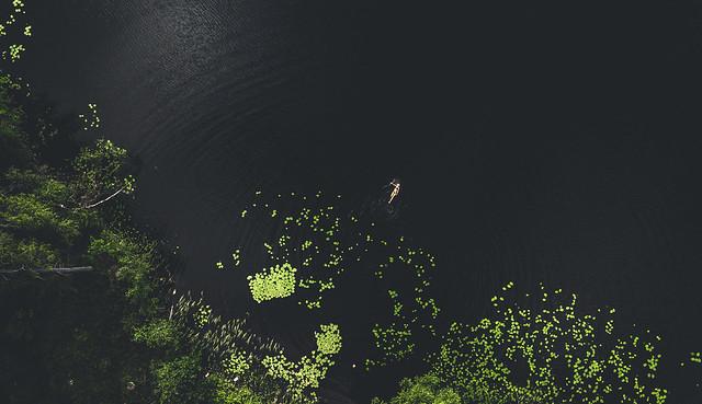 Summer at The Blackwater Lake