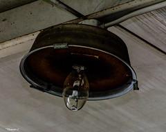 Abandoned Jaguar Dealership: Crooked Light Fixture (that_damn_duck) Tags: nikon lightfixture lightbulb bulb crooked abandoned urbex urbanexplorer jaguardealership cardealership ceiling rusting rust rusted