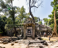 House of Fire at Ta Prohm, Cambodia (multi-photo merged for wide view) (Yasu Torigoe) Tags: krongsiemreap siemreapprovince cambodia kh sony a99ii a99m2 sonyilca99m2 siemreap siem reap angkor archeological archeology park history ancient architecture temple religion religious buddhism buddhist buddha historical ta prohm taprohm jungle trees tree tombraider banyan tomb crypt laracroft lara croft suryavarman vishnu stonework buildings surreal sculpture structure deityroots landscape overgrown vines art theravada photograph photography dynamic travel asia southeast deity ruins khmer roots houseoffire