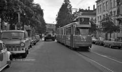 No assistance required (railfan3) Tags: amsterdam openbaarvervoer gvb 1969 plantagekerklaan amsterdamsetrams tramtrouble amsterdamtrams lijn9 gvb663 stuurstromers werkspoortrams 653669 publictransport gvb75 gvbmack75 mackkraanwagens mackheavysalvage gvbamsterdam trams trolleys tramcars tram transport tramway triebwagen tramwagens trammaterieel trammetjes tramtracks tramwegmaterieel tramsplantagekerklaan tramstellen grijzetrams vintagetrams classictrams klassieketrams retrotrams amsterdamse amsterdams streetcars strassenbahnwagen strasenbahn streetscene straatbeeld nederlandse nederland ouderwetse oudewagens oudetrams fordtransit oudetramfotos