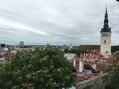 IMG_8965 (JeffTsai) Tags: 蔡老爸 愛沙尼亞 塔林 老城 old town estonia tallinn